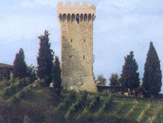 torgiano1.jpg