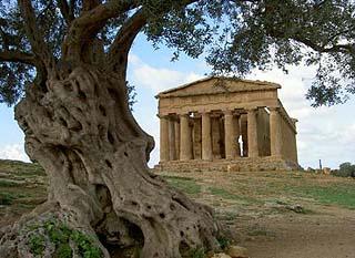 Agrigento1.jpg