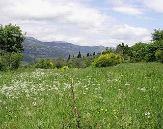 valle del bisenzio